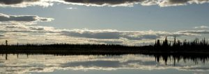 Trout Creek Lake View